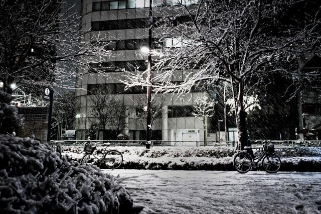 Tokyo under the snow