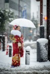Coming-of-Age Day 2013 - Heavy Snow-6